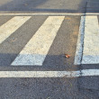 Stock Photo: Crosswalk