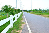 Long private, country road along a white picket fence — Foto de Stock