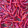 Dried red chili pepper for cooking  — Stock Photo