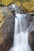 Příroda vodopád v hlubokém lese — Stock fotografie