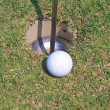 Stok fotoğraf: Golf ball on grass