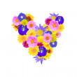 Garden flowers heart concept isolated  — Stock Photo #45638349