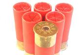 Cartridges for shotgun 12 caliber  — Stock Photo