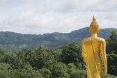 The buddha statue stands in front of the forrest — Stock Photo