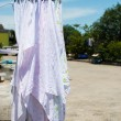 Stock Photo: Dry cloth diaper in sun