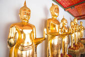 The Bueatiful buddha sculptures at Wat Po on November in Thailan — Stock Photo