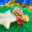 Christmas decorations and ornaments on green grass background — Stock Photo #37280997