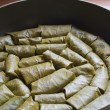 Dolm- Stuffed Grape Leaves — Foto de stock #27584917
