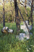 Stone crosses in the woods — Stock Photo