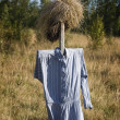 Scarecrow — Stock Photo #34323575