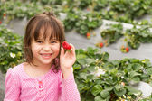 Young Girl Picking Strwberries at a Strawberry Farm — Stock Photo