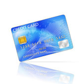 Credit Card Icon Isolated on White — Stok Vektör