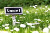 Summer signboard in the meadow — Stock Photo