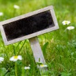 Stock Photo: Blank signboard in meadow angular