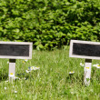 Stock Photo: Two Blank signboard in meadow angular