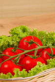 Tomate with salad in basket — Stock Photo