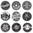 Set of Vintage Retro Labels — Stock Vector #43394295