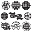 Set of Vintage Retro Labels — Stock Vector #43394331