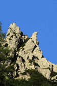 Rocks on the beach of Stintino — Stock Photo