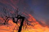 Piękny zachód słońca — Zdjęcie stockowe