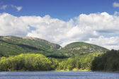 Otter Cove And mountains Acadia National Park — Stock Photo