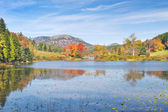 Fall on Long Pond Acadia National Park Maine — Stock fotografie