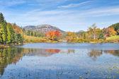 Podzim na dlouhý rybník acadia national park maine — Stock fotografie