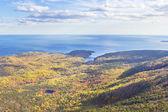 Fall Seascape Otter Point Acadia National Park Maine — Стоковое фото