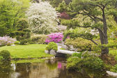 Asticou Azelea Garden, Mount Desert Island, Maine — Stock Photo