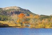 Fallen Sie auf lange Teich Acadia Nationalpark Mount Desert Island maine — Stockfoto