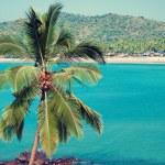 Tropical beach of Palolem — Stock Photo #26853713