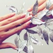 Female hand and plant — Stock Photo