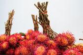 Red and fresh rambutan — Stock Photo