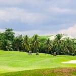 Golf course — Stock Photo #33322679
