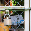 Chain link fence and metal door with lock  — Foto de Stock