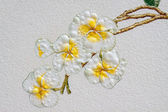 Frangipani painting on the wall in public place — Stock Photo