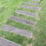 Wooden pathway — Stock Photo #34340925