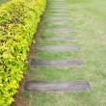 Wooden pathway — Stock Photo #34341041
