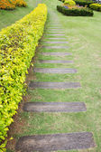 Wooden pathway — Stock Photo