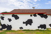 Cow pattern painted walls — Stock Photo