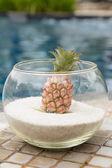 Bromeliad in glass decoration swimming pool — Stockfoto