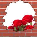 trou de brique avec des roses rouges et de l'espace pour votre texte — Photo #45741189