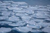 Winter on shore of the Okhotsk Sea in Abashiri (Japan). — Stock Photo
