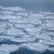 Breaking spring ice floe at the sea — Stock Photo #46616093