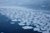 Natural ice blocks breaking up against shore and sea ice during  — Stock Photo
