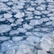 Breaking spring ice floe at the sea — Stock Photo
