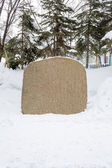 Blank stone in snow to put your own text — Stock Photo