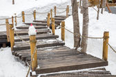 Wooden stairs and handrail on steep mountain slope covered with  — Stock Photo