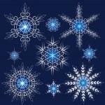 Decorative vector Snowflakes set — Stock Vector #34909693