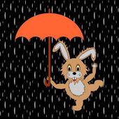A funny rabbit with umbrella in the rain — Stock Vector